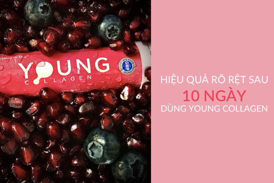 Hiệu quả sử dụng Young Collagen sau 10 ngày